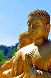 ฺBuddha statue row Royalty Free Stock Photos