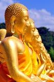 ฺBuddha statue row Stock Photo