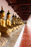 Buddha statue. The row of buddha statute in temple Royalty Free Stock Photos