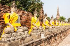 Buddha statue in row Stock Photography