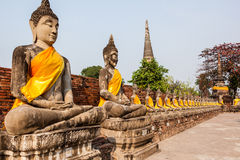 Buddha statue in row Royalty Free Stock Photo
