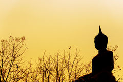 Buddha statue silhouette in sunshine Royalty Free Stock Image