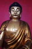 Buddha-Statue, Sri Lanka Lizenzfreies Stockbild