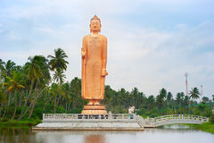 Buddha statue, Sri Lanka Royalty Free Stock Images