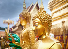 Buddha statue in the Temple Stock Photo