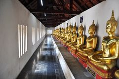 Buddha statue in Temple sequential nicely. In thailand Royalty Free Stock Photography
