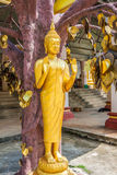 Buddha statue in Tiger temple with golden leaves, Krabi, Thailan Stock Photo