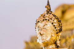 The Buddha statue to gild with gold leaf. Which people use to worship the buddha image. Selective focus stock photos