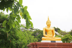 Buddha statue and the tree foreground Royalty Free Stock Photo