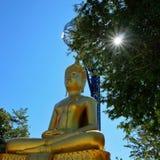 Buddha-Statue u. -sonnenlicht durch den Baum Lizenzfreie Stockfotografie