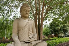 Buddha statue under bodhi tree. Buddha statue under the bodhi tree at the Fo Guang Shan Zen Temple in Jenjarom, Selangor, Malaysia Royalty Free Stock Images