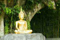 Buddha statue under green tree. Golden Buddha statue under green tree in meditative posture Royalty Free Stock Photography