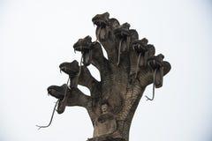 Buddha statue under seven snake Stock Photo