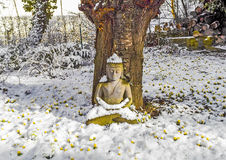 Buddha Statue under a tree in wintertime Stock Photography