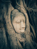 Buddha statue. Unseen in Thailand Buddha Statue Royalty Free Stock Photography