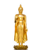 Buddha statue. In white background Royalty Free Stock Image