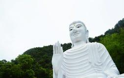 Buddha statue white Royalty Free Stock Images