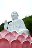 Buddha statue white Royalty Free Stock Photography