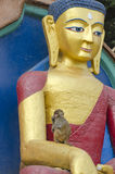 Buddha statue and wild monkey in Kathmandu, Nepal Royalty Free Stock Images