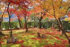 Buddha statue in a zen garden Of Adashino Nenbutsu-ji Royalty Free Stock Images