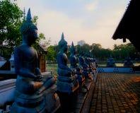 Buddha-Statuen in Seema Malaka Temple, Colombo, Sri Lanka lizenzfreie stockbilder