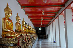 Buddha statues. Golden statues of meditating Buddha in a corridor Stock Images
