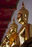 Buddha Statues Royalty Free Stock Photo
