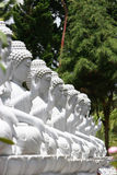 Buddha Statues Royalty Free Stock Photography