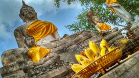 Buddha statues in Ayutthaya in Thailand royalty free stock photos