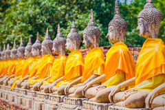 Buddha statues in Ayutthaya,Thailand. In 1767, the city was dest. Royed by the Burmese army. The ruins are preserved in Ayutthaya historical park, which is Stock Photo