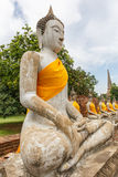 Buddha statues in Ayutthaya,Thailand Stock Images
