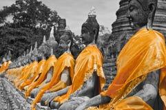 Buddha statues B&W. Buddha statues in a row at 'Wat Yai-Chaimongkol' Buddhist temple in Ayutthaya - Thailand  (selective desaturation: B/W + orange Royalty Free Stock Photos