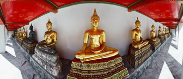 Buddha statues in  Bangkok, Thailand Royalty Free Stock Photo