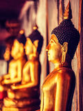 Buddha statues in Buddhist temple, Thailand Royalty Free Stock Photo