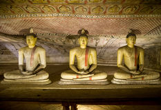 Buddha Statues at Dambulla Cave Temple, Golden Temple of Dambulla, Sri Lanka Stock Photography