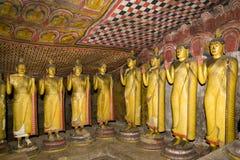 Buddha Statues at Dambulla Rock Temple, Sri Lanka. Image of Buddha statues in a cave at the ancient Rock Temple, Dambulla, Sri Lanka. This is a UNESCO World Royalty Free Stock Photo