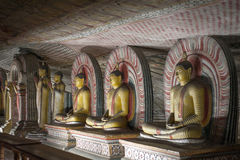 Buddha Statues at Dambulla Rock Temple, Sri Lanka Royalty Free Stock Photography