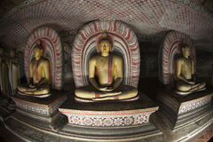 Buddha Statues at Dambulla Rock Temple, Sri Lanka Stock Photography