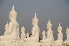 Buddha statues field Royalty Free Stock Image
