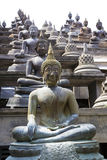 Buddha Statues at Gangaramaya Temple Royalty Free Stock Photos
