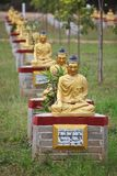 Buddha statues garden, Myanmar Royalty Free Stock Photo