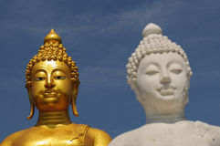 Buddha Statues. A golden and white buddha statue Royalty Free Stock Images