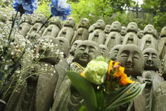 Buddha Statues at Hase-Dera Temple Royalty Free Stock Photography