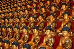 Buddha statues in Hua Yan or Huayan Temple in Tumen, Jilin Province, Korea Yanbian Prefecture. An interesting way to honor stock images