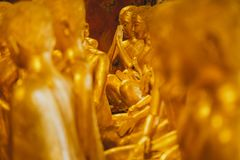 Many golden Buddha statue, The point of focus in one beautiful buddha statue  in old temple, peaceful and holy. The Buddha statues or Buddha images are not only Royalty Free Stock Images
