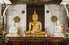 Buddha statues inside the Temple of the Tooth Stock Photos