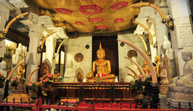 Buddha statues inside the Temple of the Tooth Stock Image