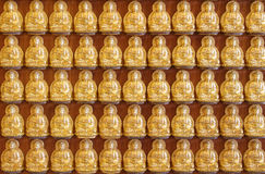Buddha statues in lines at Chinese church in Thailand. Royalty Free Stock Images