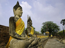 Buddha statues in a row at Stock Images