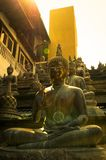Buddha statues in sunset lights. In Gangaramaya temple, Colombo stock photos